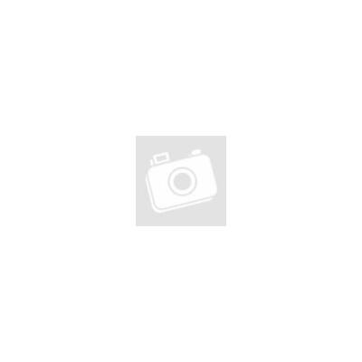 San Benedetto Ice Tea ZERO Citrom 0,5 L